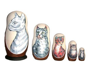AC5c8k